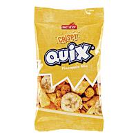 Nectaflor QUIX Crispy Pineapple Mix 15g